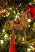 18th Dec 2020 - Christmas Pony...
