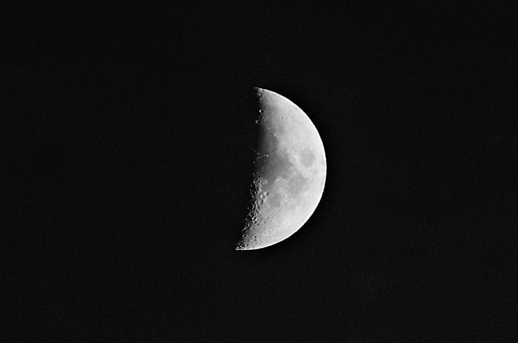 Moon by randy23