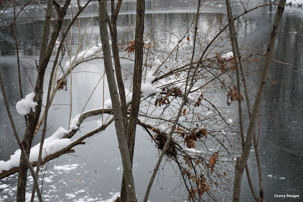 Winter wonderland 4 by larrysphotos
