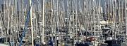 19th Dec 2020 - The Masts off Haslar Marina