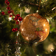 19th Dec 2020 - Joy To The World...
