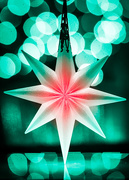19th Dec 2020 - Holiday Star