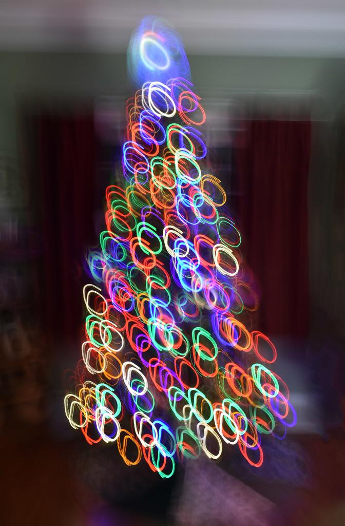 Tree Light Painting by homeschoolmom