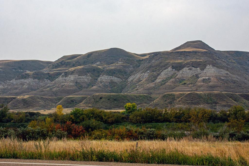 Finally Back on the Prairies by farmreporter