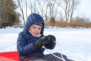 20th Dec 2020 - Snow day #1