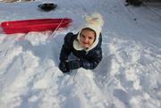 19th Dec 2020 - Snow day #2