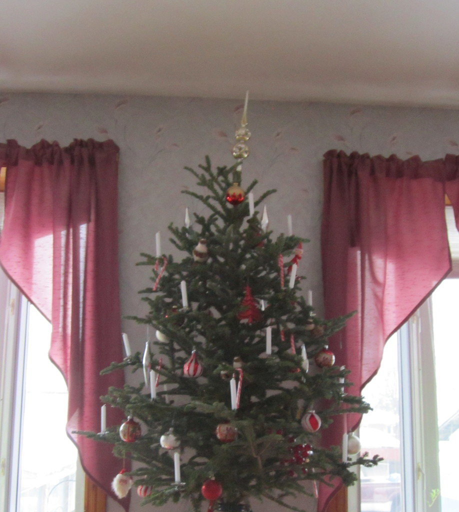 Almost done decorating this little tree by bruni