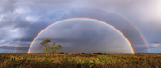 20th Dec 2020 - Rainbows