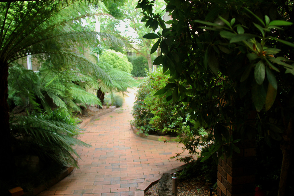 My Garden Path by landownunder