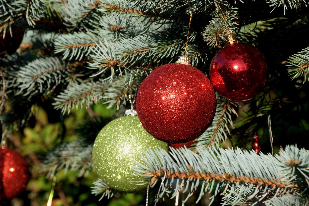TREE DECORATIONS  by markp