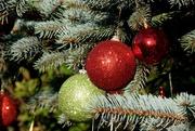 19th Dec 2020 - TREE DECORATIONS