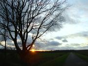 22nd Dec 2020 - sunset