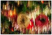 22nd Dec 2020 - Christmas Sparkles...