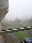 7th Dec 2020 - A Foggy Morning