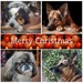 Merry Christmas  by salza