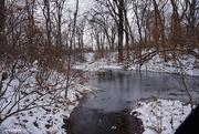 22nd Dec 2020 - Frozen pond