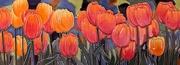 16th Dec 2020 - Tulips