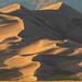 Swirls on the Dunes by photograndma