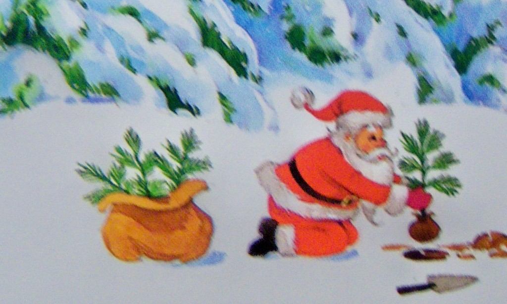 Busy Santa planting some seedlings today by bruni