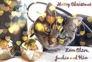 24th Dec 2020 - Olive's Greetings