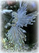 24th Dec 2020 - Angel
