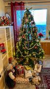 24th Dec 2020 - the Christmas tree