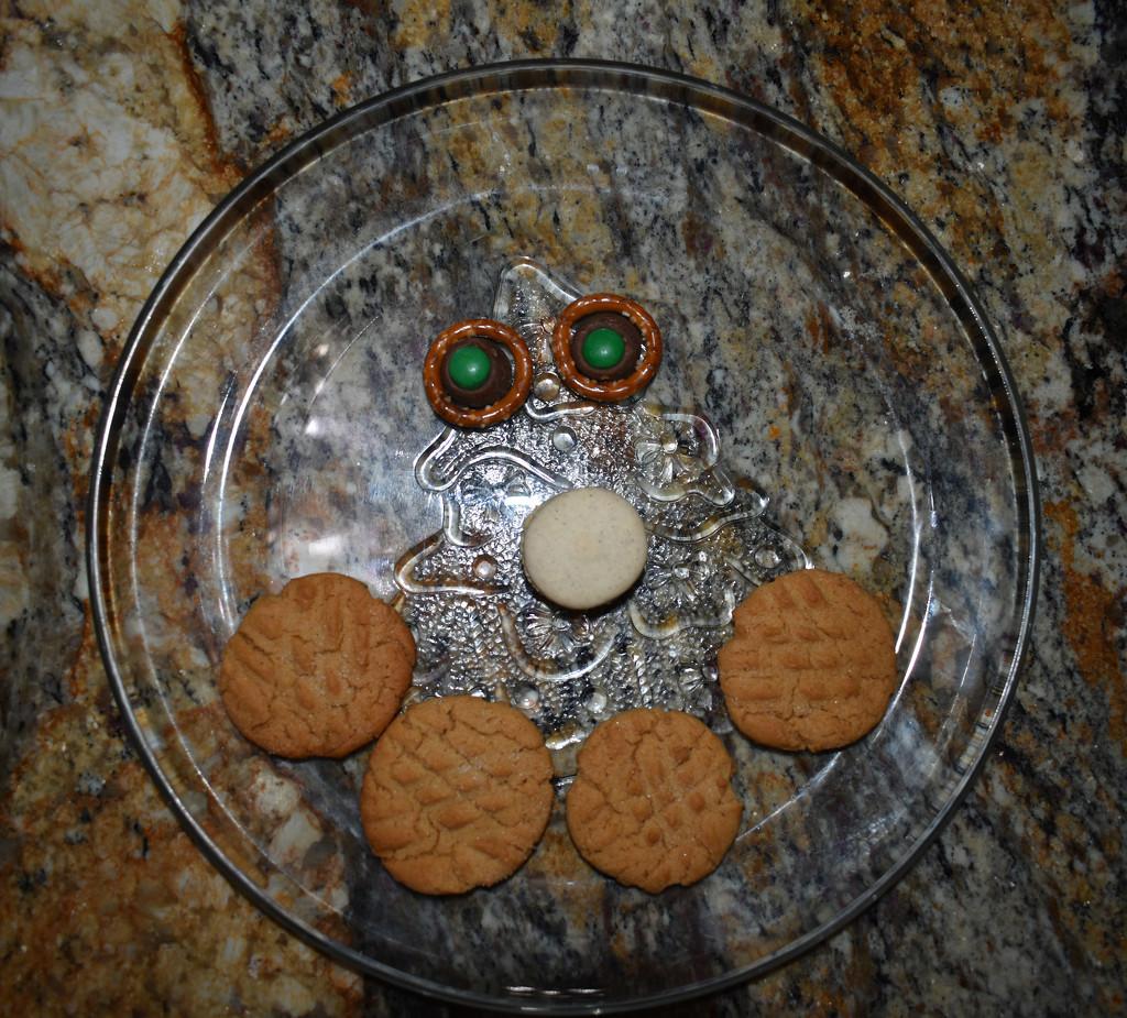 Flatlay Christmas Cookies by homeschoolmom