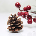 berries and pine cone by summerfield