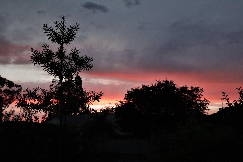 25 Xmas Sunset by sandradavies