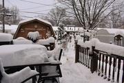 24th Dec 2020 - White Christmas