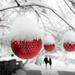 walking in a winter wonderland... by northy