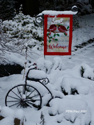 25th Dec 2020 - We Have a White Christmas!!