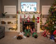 24th Dec 2020 - Christmas Eve