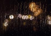 25th Dec 2020 - It's a Rainy Night In Oregon