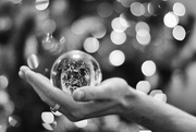 26th Dec 2020 - Christmas in a Bubble