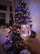 24th Dec 2020 - Cheers!