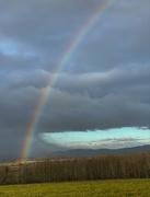 25th Dec 2020 - Magical Rainbow