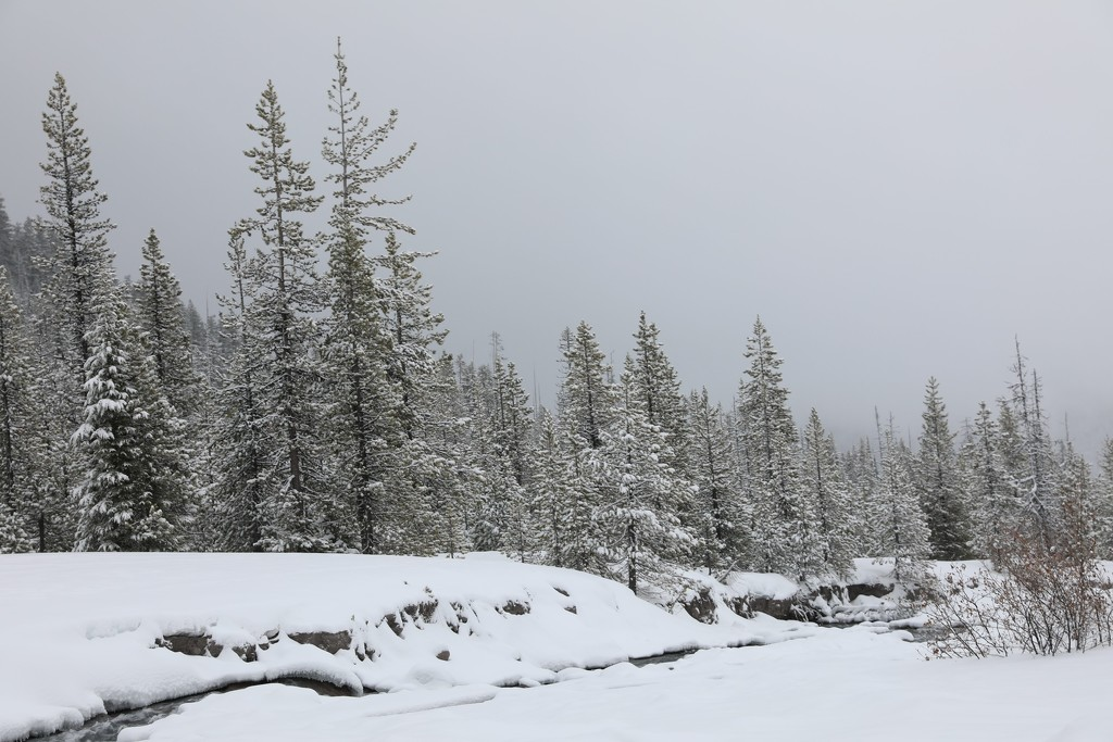 Winter by gapandgain