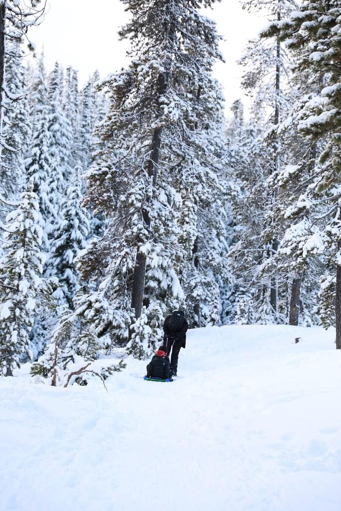 Snow Hike by gapandgain