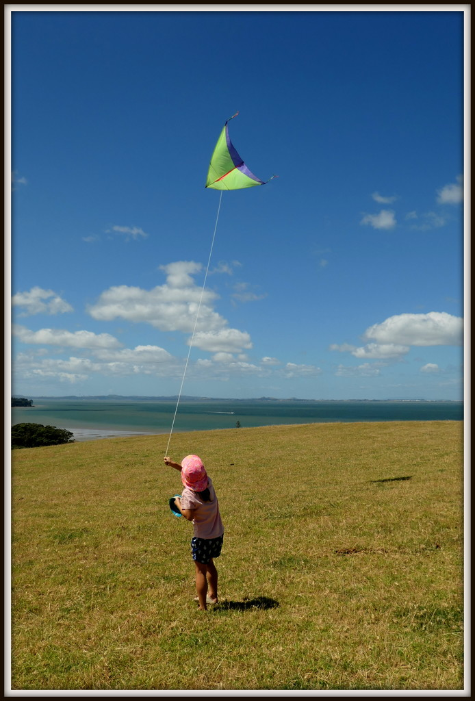 The junior kiteflyer by dide