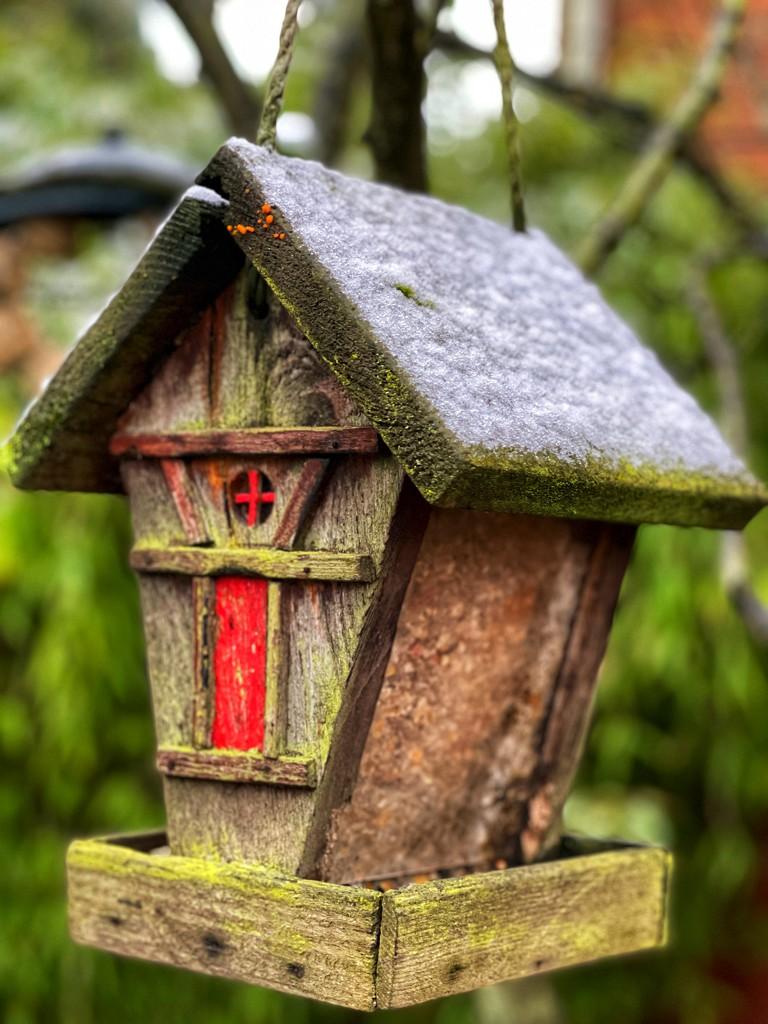 Bird feeder by tinley23