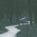 Winter's Path by ginnys
