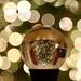 Lens Ball Bokeh by carole_sandford