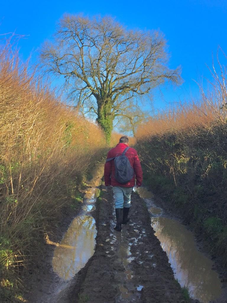 Muddy walk by lilaclisa