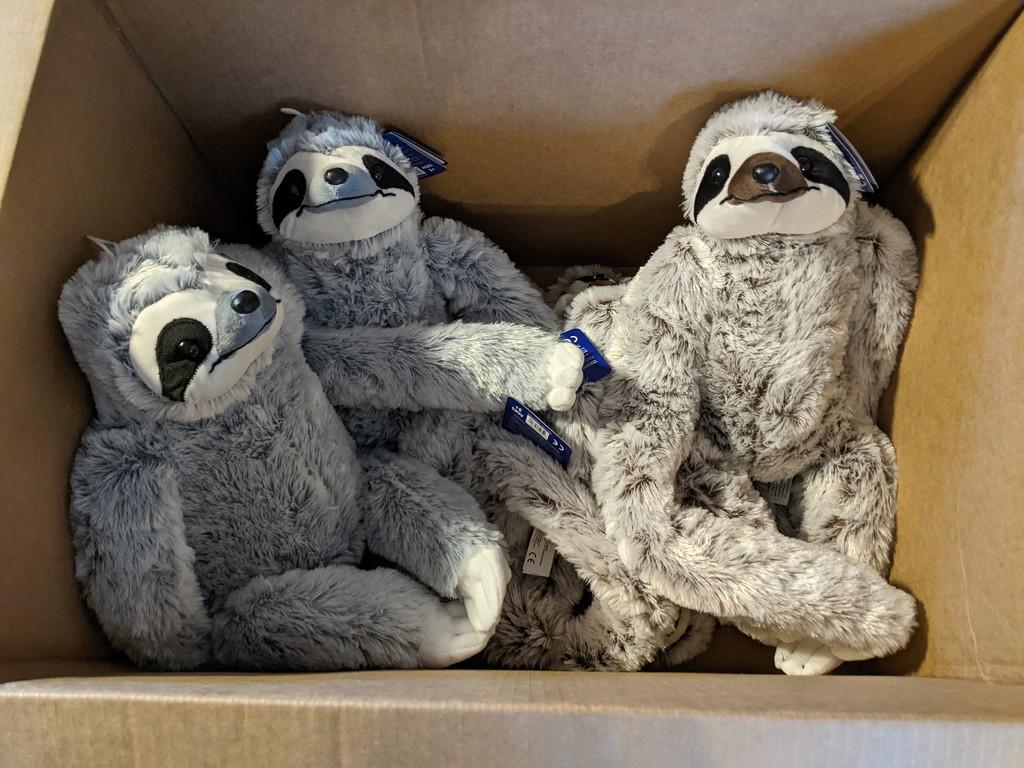Box of sloths by prairiesmoke