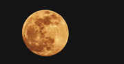 28th Dec 2020 - Tonight's Almost Full Moon!