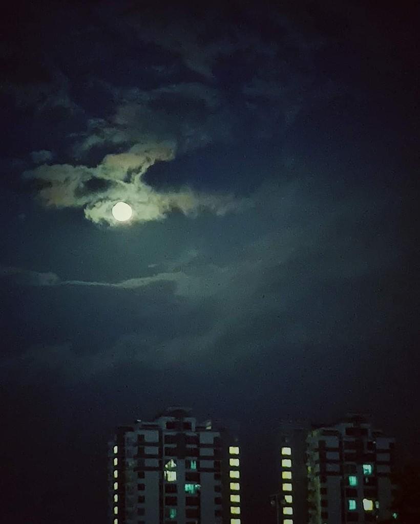 363/365⁴ : spotlight in the sky by jackhoo