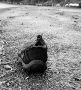 29th Dec 2020 - The shoe left behind