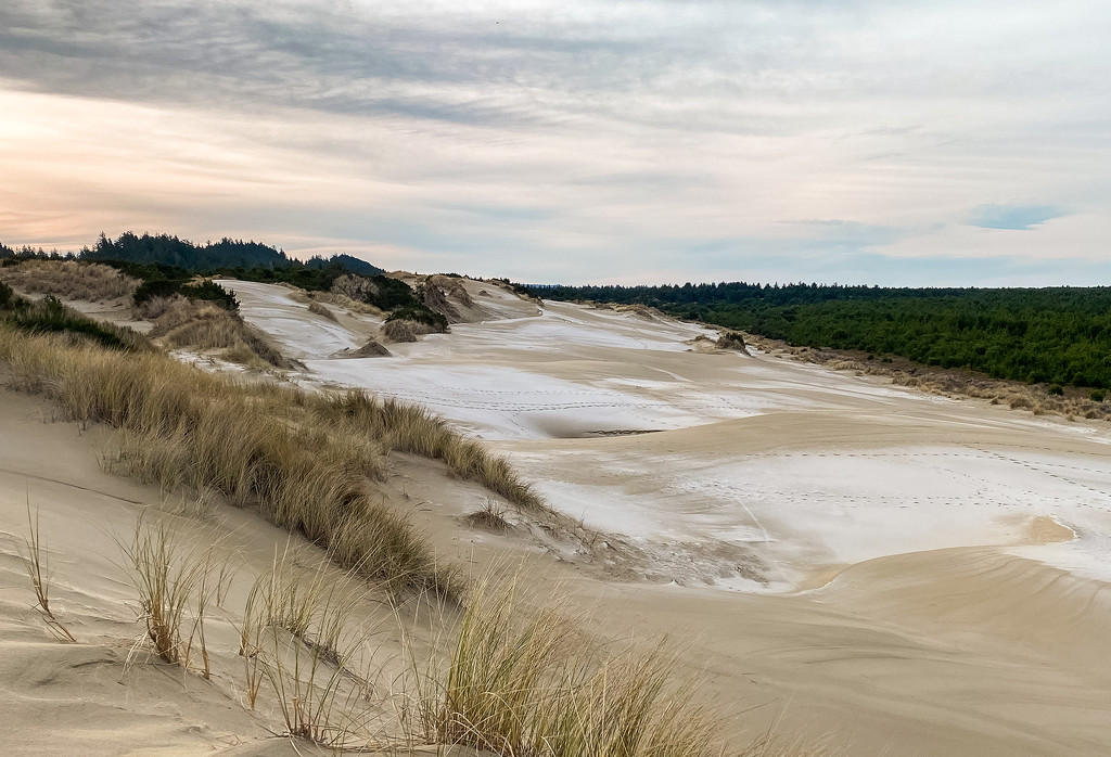 Cold Morning Hike On the Dunes  by jgpittenger