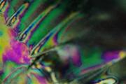 29th Dec 2020 - Photoelasticity Abstract 1